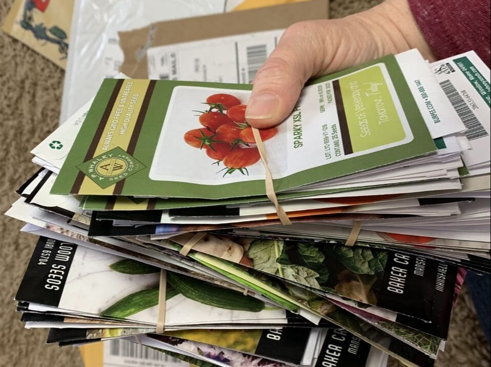 Picture of a huge handful of seed packets
